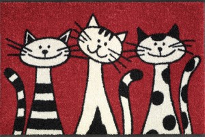 Коврик для дома wash+dry ® Three Cats 50x75